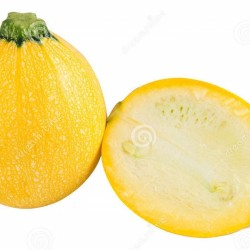 Courgettes ronde jaune