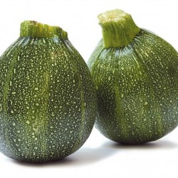 Courgettes ronde vert