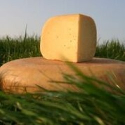 Fromage vieux - 350g*