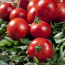 tomate paola 750 g